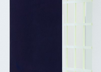 Blue Light Coloured System II, 2008 vinyl, akrylglas 24,5 x 19,5 x 8,5 cm