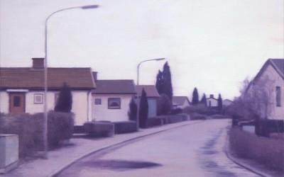 Cypressville, olja på duk 40x60 cm