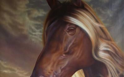 Horse_Ola