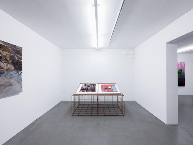 Installationview Erik Berglin - The Bird Project