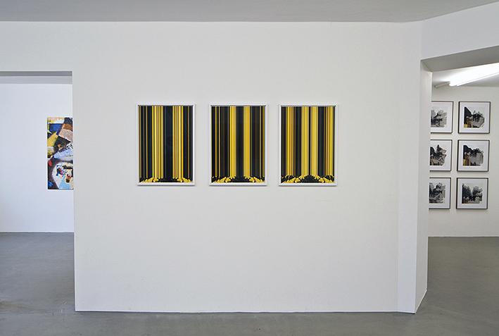 Erik Berglin, Tulip Variations, photography, various sizes, ed. 1/1, part of his solo show G.A.C.G.A.S at Galleri Thomassen, 2015.